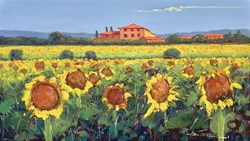 Girasoli Nel Campo II by Bruno Tinucci - Original Painting on Stretched Canvas sized 28x16 inches. Available from Whitewall Galleries